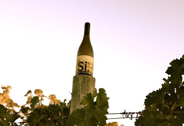 High-Hopes-Wine-Co-Si_P